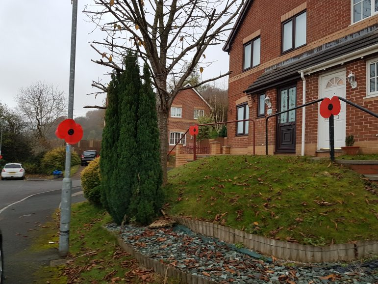 Poppies have been put on lampposts in Rosemead in Cwmbran