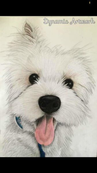 A drawing of a dog by Chelsea Jones of CAJ Artwork